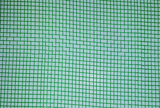 Mosquito-Verde