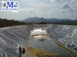Geomembrana para estanque dm acuacultura for Lagunas artificiales construccion