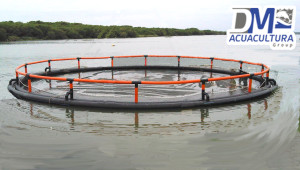 jaula_flotante_acuicola_mar abierto_dm_acuacultura_dmtecnologias_7